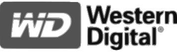 Critical Solutions - Video Surveillance (CCTV) - Disco duro Western digital 01