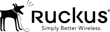 Critical Solutions - Video Surveillance (CCTV) - Infraestructura de red Ruckus 01
